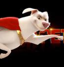 DC League of Super-Pets à la rescousse !!